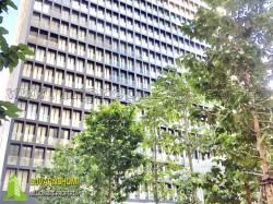 คอนโด โนเบิล เพลินจิต Noble Luxury Condominium